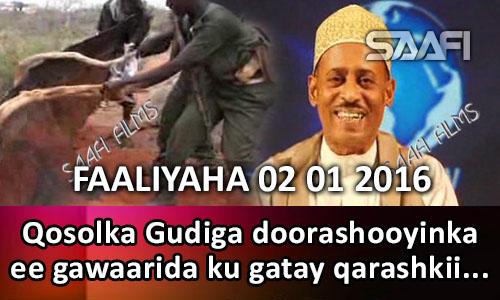 Photo of Faaliyaha Qaranka 02 01 2016 Qosolka Gudiga doorashooyinka oo xilka laga xayuubiyay kadib markii ay gawaari…