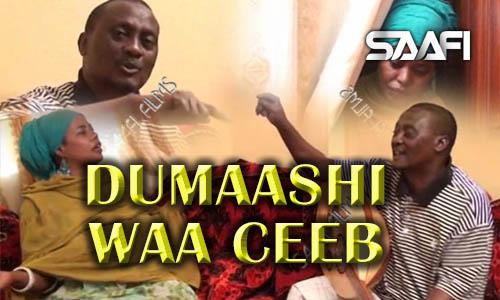 Photo of Dumaashi Waa Ceeb, Sheeko gaaban oo qosol badan