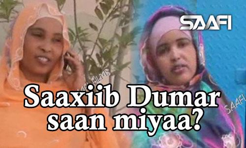 Photo of Saaxiib Dumar Saan Miyaa? Sheeko gaaban.