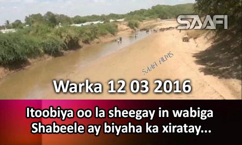 Photo of Warka 12 03 2016 Itoobiya oo la sheegay in wabiga Shabeele ay biyaha ka xiratay..