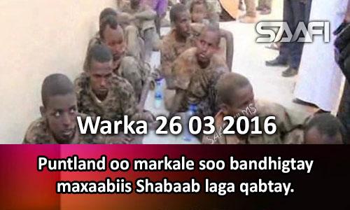 Photo of Warka 26 03 2016 Puntland oo markale soo bandhigtay maxaabiis Shabaab laga qabtay..