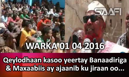 Photo of Warka 01 02 2016 Qeylodhaan kasoo yeertay Banaadiriga & maxaabiis ay ajaanib ku jiraan oo lasoo bandhigay