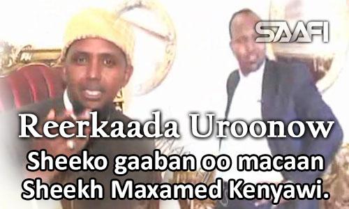 Photo of Reerkaada uroonow Sheeko gaaban oo macaan Sheekh Maxamed Kenyawi