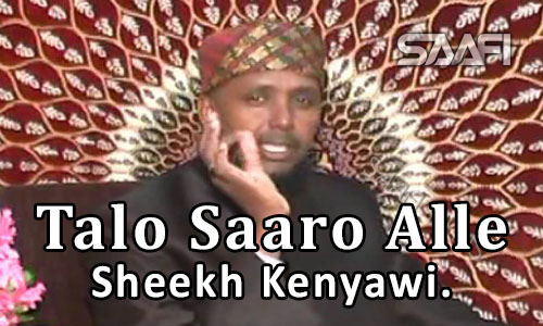 Photo of Talo Saaro Alle Sheekh Kenyawi Cairi Egypt Saafi Films.