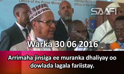 Photo of Warka 30 06 2016 Arrimaha jinsiga ee muranka dhaliyay oo dowlada lagala fariistay.
