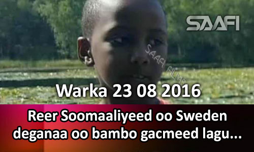 Photo of Warka 23 08 2016 Reer Soomaaliyeed oo Sweden deganaa oo bambo gacmeed lagu..