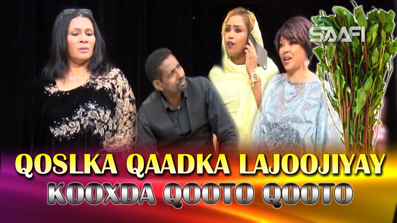 Photo of Qosolka Qaadka lajoojiyay & Qooto Qooto oo mujaajilo kasoo sameeyay.