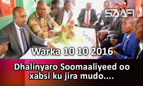 Photo of Warka 10 10 2016 Dhalinyaro Soomaaliyeed oo mudo xabsi ku jira oo lagu booqday.