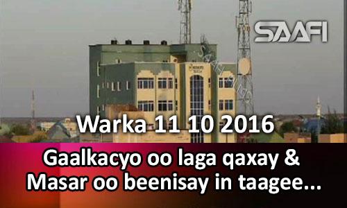 Photo of Warka 11 10 2016 Gaalkacyo oo laga qaxay & Masar oo beenisay in taageere ay…