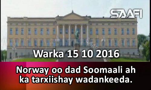 Photo of Warka 15 10 2016 Norway oo dad Soomaali ah ka tarxiishay dalkeeda.