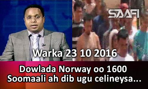 Photo of Warka 23 10 2016 Dowlada Norway oo 1600 Soomaali ah dib ugu celineysa Soo…