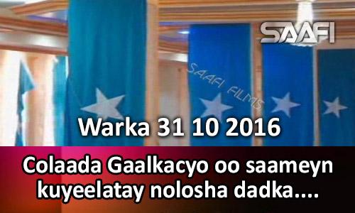 Photo of Warka 31 10 2016 Colaada Gaalkacyo oo saameyn kuyeelatay nolosha dadka ku…