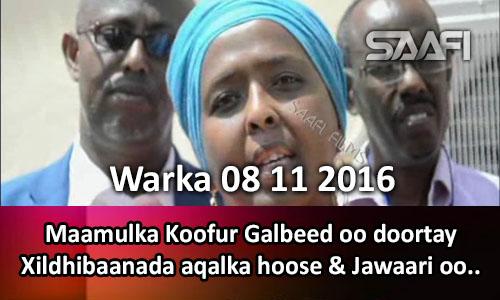 Photo of Warka 08 11 2016 Maamulka Koofur Galbeed oo doortay xildhibaanada aqalka hoose & Jawaari oo…