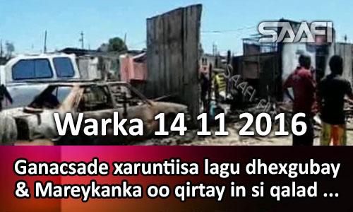 Photo of Warka 14 11 2016 Ganacsade xaruntiisa lagu dhexgubay & Mareykanka oo qirtay in si…
