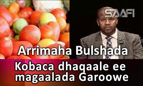 Photo of Kobaca dhaqaale ee magaalada Garoowe Arrimaha Bulshada  09 12 2016.