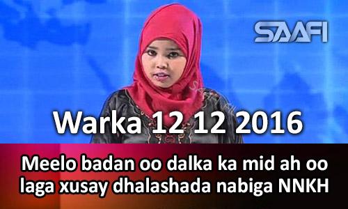 Photo of Warka 12 12 2016 Meelo badan oo dalka ka mid ah oo laga xusay dhalashada nabiga NNKH.