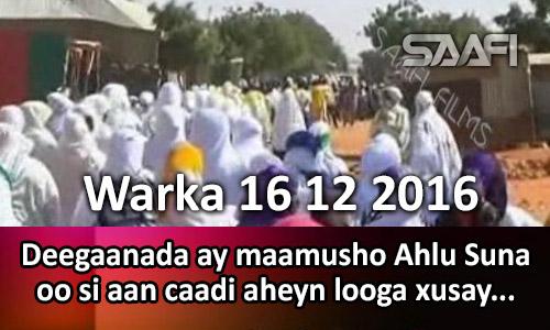Photo of Warka 16 12 2016 Deegaanada ay maamusho Ahlu Suna oo si weyn looga xusay dhalshada nabiga NNKH.