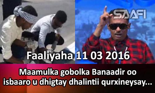 Photo of Faaliyaha 11 03 2017 Maamulka Gobolka Banaadir oo isbaaro u dhigtay dhalintii qurxineysay.