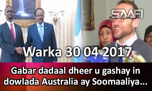 Photo of Warka 30 04 2017 Gabar dadaal dheer u gashay in Australia ay Soomaaliga gudoonsiiso lacago gaaraya..