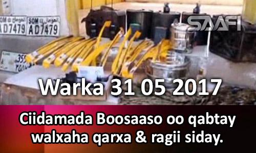 Photo of Warka 31 05 2017 Ciidamada Boosaaso oo qabtay walxaha qarxa & ragii siday.