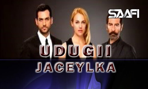 Photo of Udugii Jaceylka Advert