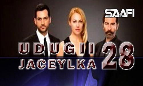 Photo of Udugii Jaceylka 28