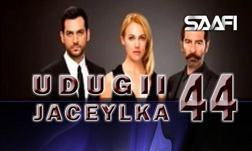 Photo of Udugii Jaceylka 44