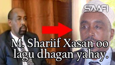 Photo of Madaxweyne Shafiir Xasan oo lagu dhagan yahay kadib markii uu taageeray xulifada Sacuudiga.