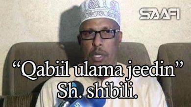 Photo of Qabiil ulama jeedin tilmaantii sawirka waxaa yiri Sh. Shibili.