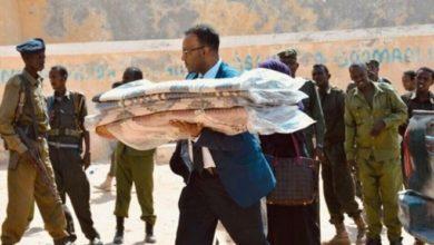Photo of Somalis diaspora use skills to help rebuild homeland