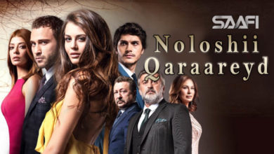 Noloshii qaraareyd A Turkish drama is gaining a reputation & taking the market of Hollywood & Bollywood