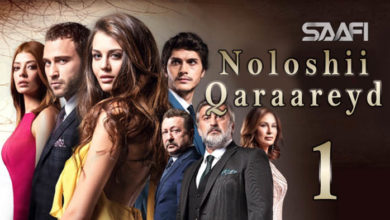 Noloshii qaraareyd Part 1 Turkish drama is gaining a reputation & taking the market of Hollywood & Bollywood