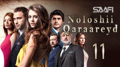Noloshii qadhaadheyd Part 11 Turkish is taking over Hollywood & Bollywood