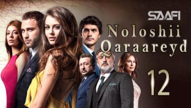 Photo of Noloshii qadhaadheyd Part 12