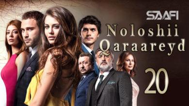 Photo of Noloshii qadhaadheyd Part 20