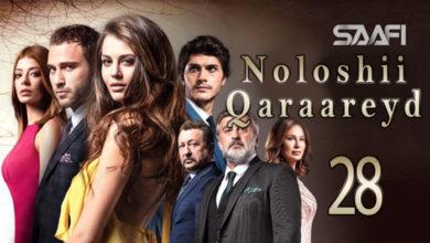 Photo of Noloshii qadhaadheyd Part 28 Musalsal Turki af Soomaali