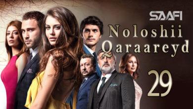 Photo of Noloshii qadhaadheyd Part 29 Musalsal Turki af Soomaali