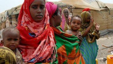 Photo of Voluntary Repatriation Of Somali Refugees From Yemen – UNHCR