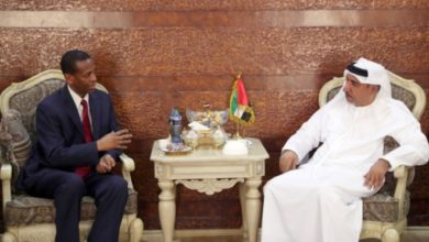 Photo of UAE ambassador meets IGAD special envoy to Somalia