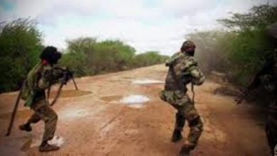 Photo of Somali Govt Forces Ambush Al Shabaab Bases Near Qoryoley Town