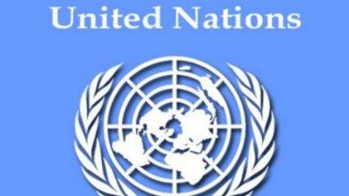 Photo of UAE Violates UN Arm Embargo In Somalia