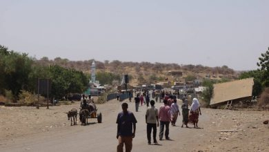 Photo of Ethiopia Says Ethnic Clashes Kill More Than 20 In Past Week