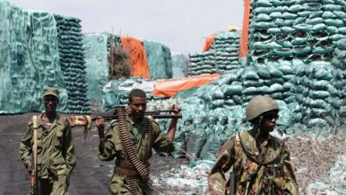 Photo of Kenyan Soldiers Don't Smuggle Charcoal In Somalia – KDF