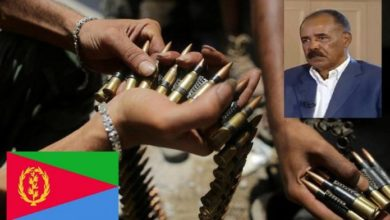 Photo of Eritrea 'Support' For Al-Shabaab Unprovable, U.N. Experts Want Sanctions Lifted