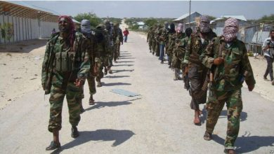 Photo of Somalia lays out work plan for rehabilitation of ex-militants