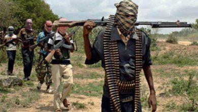 Photo of Al-Shabaab Militants Surrender In Southwestern Somalia