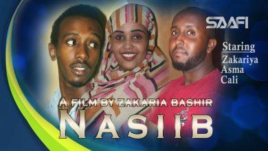 Photo of Nasiib Part 1 Sheeko gaaban oo qiso xambaarsan
