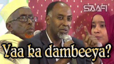 Photo of Yaa ka dambeeya dhibaatada Soomaaliya Dood kulul Saafi Films