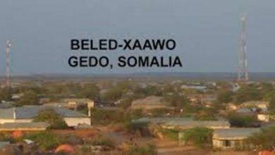Photo of Tension Rises As Kenya Encroaches Into Somalia's Land