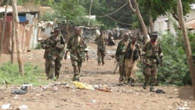 Photo of Somali Govt Forces Carry Out A Security Operation In Afgoye